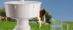 What to Look out for When Looking for a Milk Separator